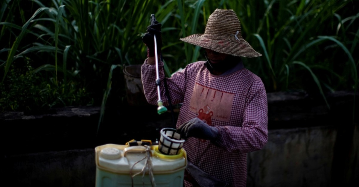 A farmer prepares to spray pesticides at a sugar cane field at a village of Menghai county in Xishuangbanna Dai Autonomous Prefecture, Yunnan Province, China, July 12, 2019. (REUTERS Photo)