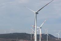 Borusan EnBW to build 10 more renewable power plants