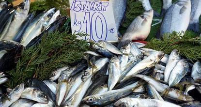 233 مليون دولار صادرات تركيا من الأسماك في الربع الأول من 2018