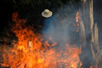 Wildfires in Brazil surge as Amazon rainforest burns at record rate