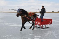 Ride like the wind: Troikas take over frozen Lake Çıldır