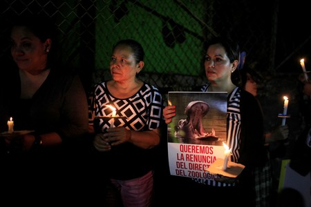 People participate in a protest over the death of a hippo after an attack in San Salvador. (Reuters Photo)