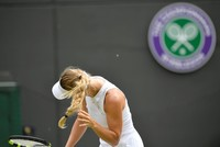 Wozniacki knocked out of Wimbledon by 'lucky' Makarova amid flying ant invasion