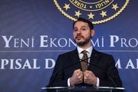 وزير الخزانة والمالية التركي، برات ألبيراق (وكالة الأنباء الفرنسية)