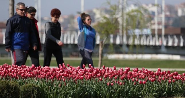 حدائق مدينة بورصة التركية تزهو بـ 26 مليون وردة