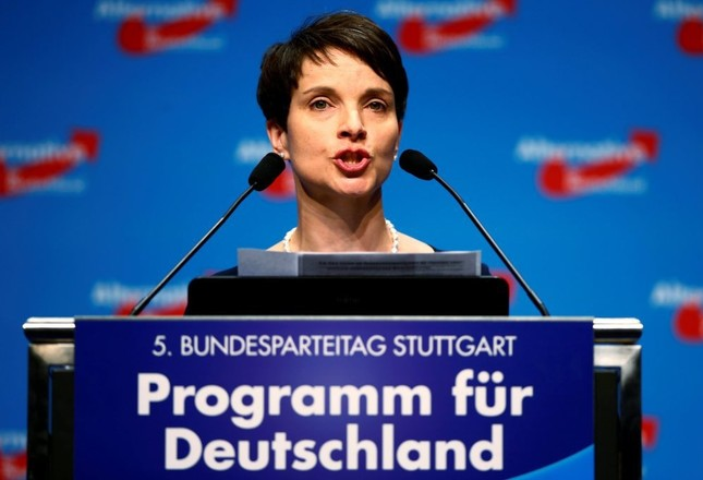 German right-wing leader backs citizens' right to arm themselves
