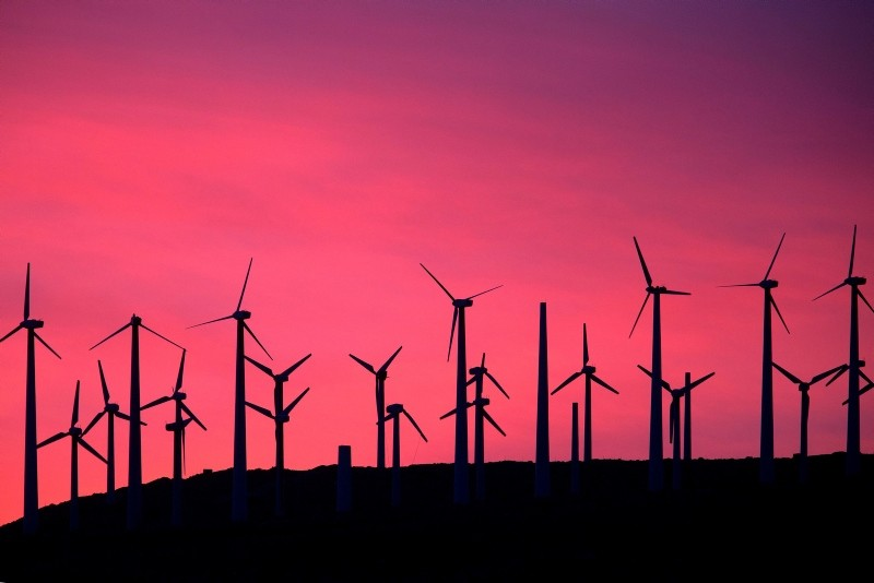 In this file photo taken on April 22, 2016 Electric energy generating wind turbines are seen on a wind farm in the San Gorgonio Pass area on Earth Day near Palm Springs, California. (AFP Photo)