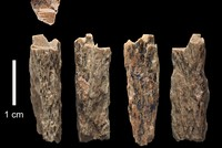 Cave girl half Neanderthal, half Denisovan, scientists say