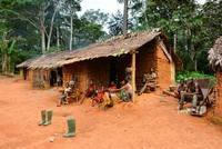 Neighboring the Atlantic Ocean, the forested lands of Middle and West Africa are home to Pygmies, which are known to be the shortest people in the world. Despite thousands of years having passed,...