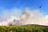 Wildfires prompt evacuations in western Turkey's Muğla, Izmir