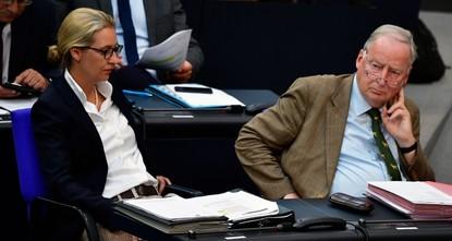 AfD muss wegen Spenden 400.000 Euro zahlen