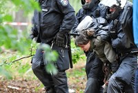 German police forcibly clear protestors from ancient forest marked for mining