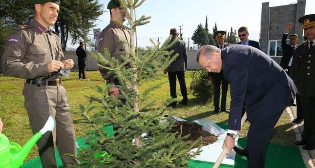 صورة أرشيفية للرئيس التركي أردوغان أثناء قيامه بزراعة شجرة في ولاية بورصا غربي تركيا