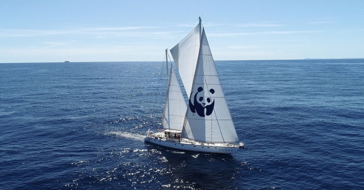 WWF's boat Blue Panda is in Istanbul to draw attention to marine pollution in the Mediterranean.