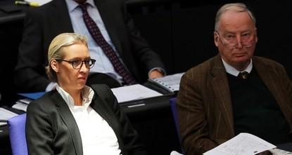 AfD bekam aus Belgien weitere Großspende