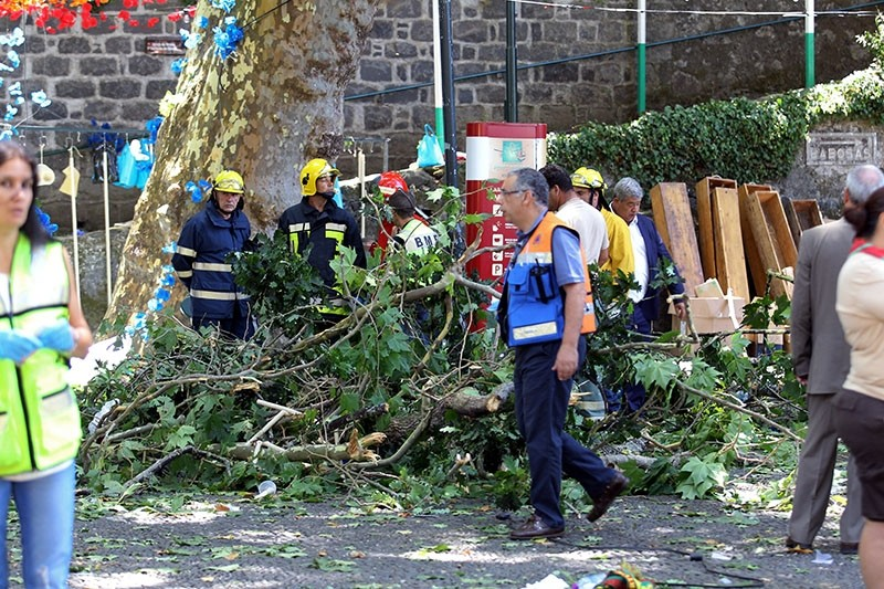 Firemen and emergency workers secure the site where a large tree fell and injured several people in Largo da Fonte, in the parish of Monte (EPA Photo)