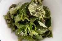 Damaged leaves in ready-to-eat salads encourage salmonella growth, study finds