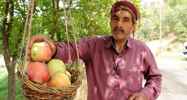 مزارع تركي يفتح سبيلاً من التفاح للمارين بالقرب من بستانه
