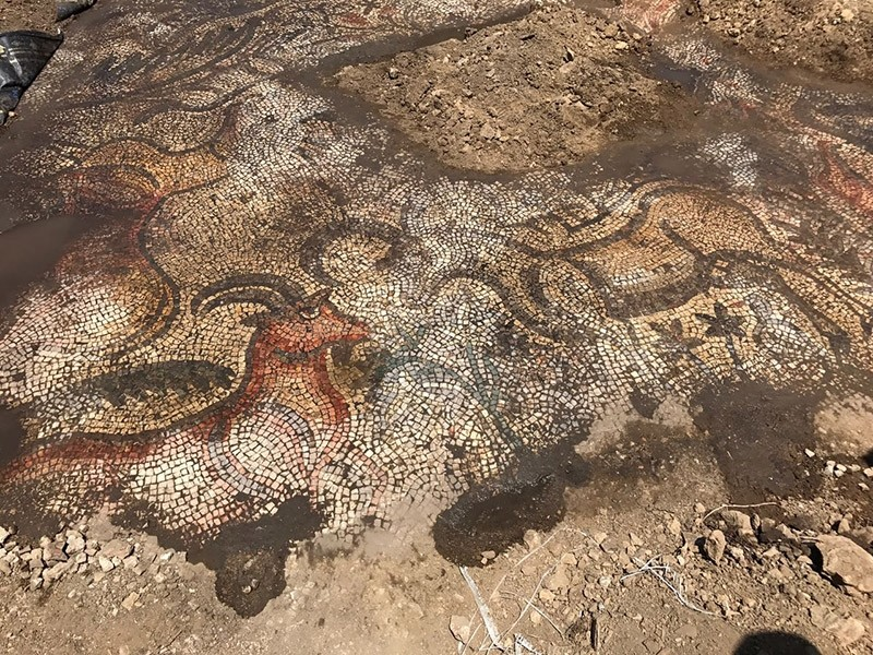 4th century BC mosaic discovered by two farmers in Turkey's Adu0131yaman province (AA Photo)