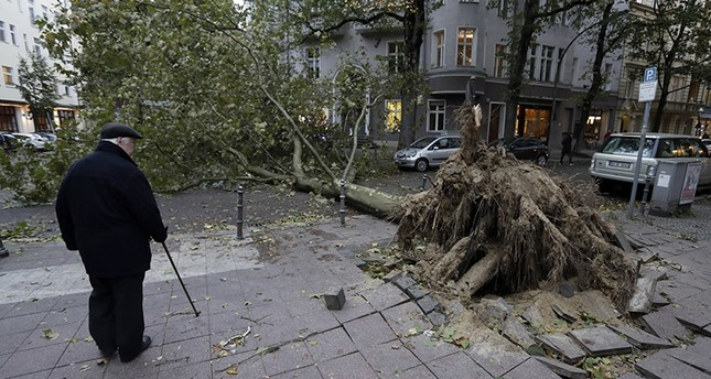 A man looks at a uprooted  tree that has crashed on a street during a heavy storm in Berlin, Germany, Thursday, Oct. 5, 2017. (AP Photo)