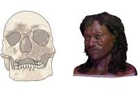 Nordeuropäer länger dunkelhäutig als zuvor bekannt