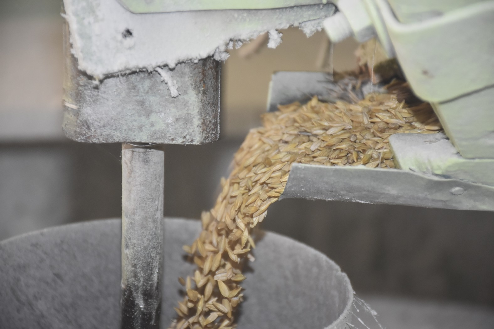 The mill grinds between 150 and 500 tons of grains every year. Especially after the harvesting season, people queue up in front of the mill.