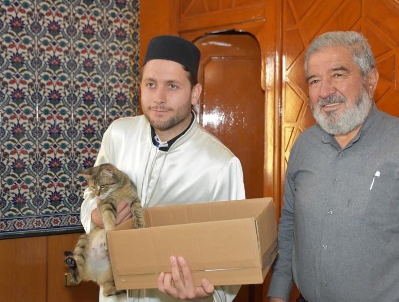 Imam Hu00fcseyin Su00fct poses with the cat in u00c7eu015fmeli Mosque in Turkey's Ku0131ru0131kkale province (IHA Photo)
