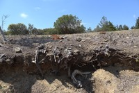 Anzac trenches unearthed after 104 years