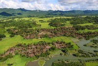 Myanmar army investigates mass grave discovered in Rakhine state