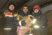 It is not known how it ended up in a 60-meter-deep borehole in Beykoz, Istanbul, but a Kangal (native Turkish guard dog) puppy made headlines for its plight. Soon after, offers of help to retrieve...