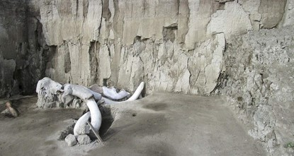 15,000-year-old mammoth traps found in Mexico