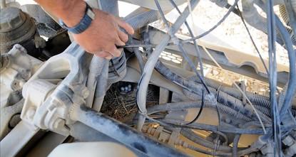شركة مقاولات تركية توقف شاحنة عن العمل بعدما بنى زوج طيور عشه في محركها