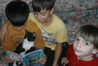 Syrian boy in Turkey wins international photo competition for reading with his cat