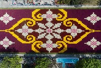 Istanbul blossoms with world's largest tulip carpet
