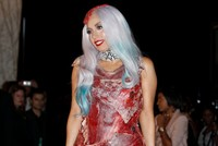 Meat smugglers inspired by Lady Gaga's 'raw beef dress' caught at Georgian border