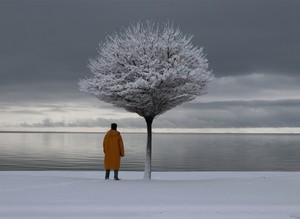 Невероятные зимние пейзажи на озере Ван