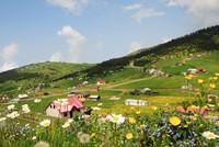 New address for Turkey's highland tourism: Tonya