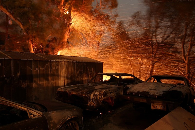 Embers blow from a tree shortly before it fell down near burned cars as strong winds push the Thomas Fire across thousands of acres near Santa Paula, California, U.S., December 5, 2017. (Reuters Photo)