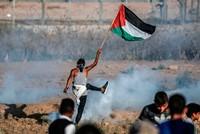 أكثر من 30 جريحا فلسطينيا برصاص الجيش الإسرائيلي على الحدود الشرقية لغزة