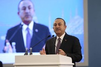 'Turkey committed to support OIC mediation efforts'