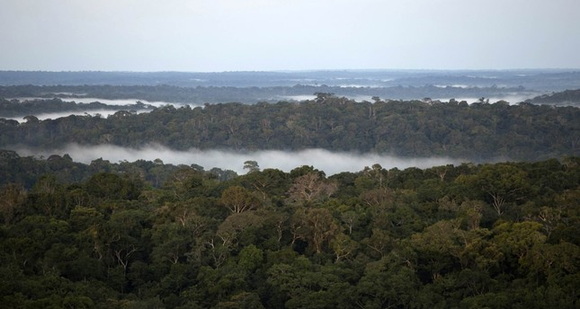 Proposed Amazon dam would fuel land speculation, deforestation, study says