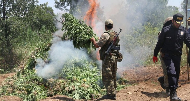 Security forces conduct operations to destroy illegal drugs that are used by the PKK terror group as one of its main sources of revenue.