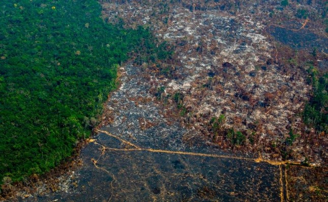 File photo taken on Aug. 28, 2019, showing an aerial view of deforestation in Nascentes da Serra do Cachimbo Biological Reserve in Altamira, Para state, Brazil, in the Amazon basin. (AFP Photo)