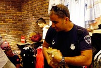 Kittens rescued after Turkish store owner has change of heart