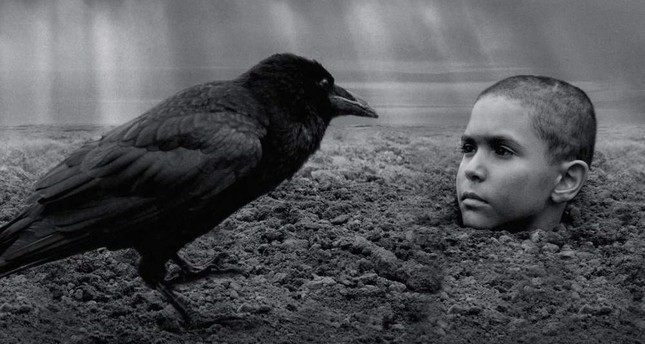 'The Painted Bird' revolves around a Jewish boy orphaned during World War II.