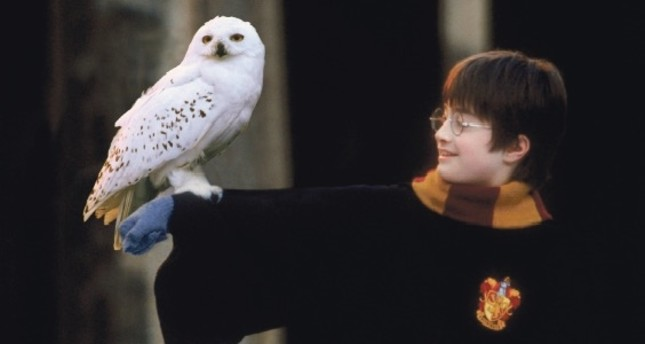World of Harry Potter at magical events
