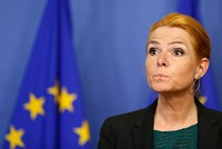 Denmark's integration minister sparked fresh controversy when she republished a cartoon depicting the Prophet Muhammad, threatening to reignite outrage experienced by many Muslims around the world...
