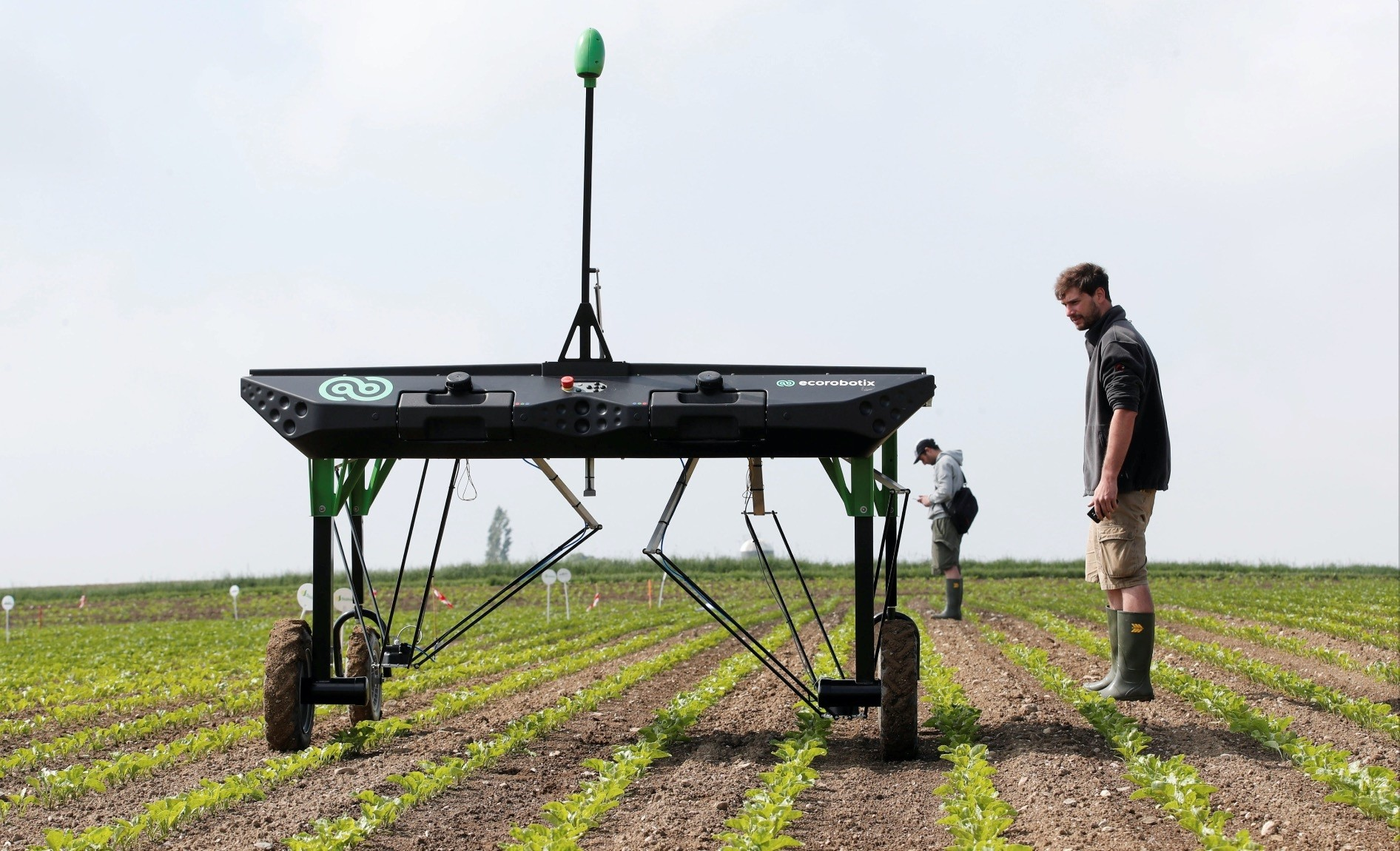 The prototype of an autonomous weeding machine by Swiss start-up ecoRobotix is pictured during tests on a sugar beet field near Bavois, Switzerland.
