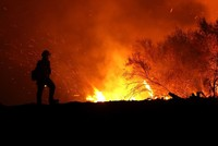 World on fire: How climate change makes wildfires worse