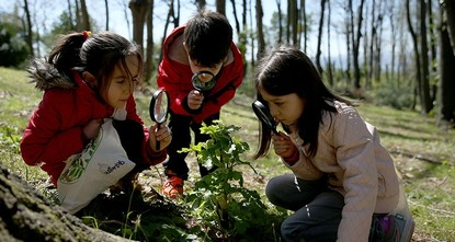 pSome 16,000 children aged three to 18 have journeyed to Istanbul forests to experience the sun, water, plants, and other ecosystem features in order to improve their intellectual, emotional, and...
